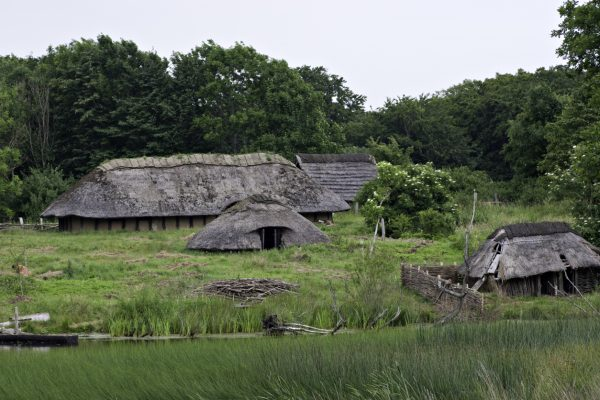 The arrival of the early Neolithic farmers in Britain affected the populations that already inhabited the island.