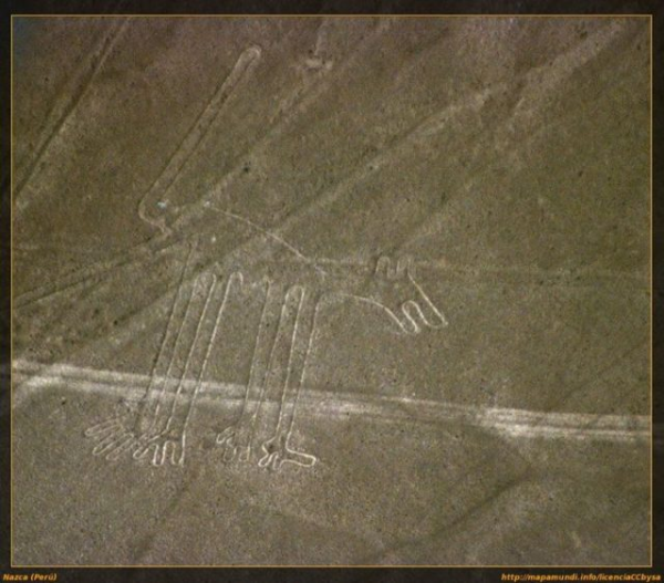 "The Nazca lines ""dog"" Credit: Yamagata University"