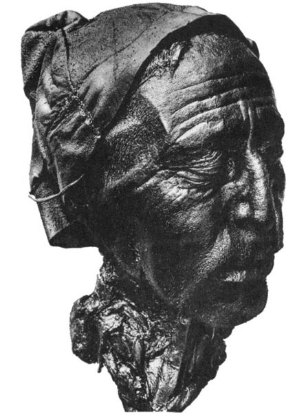 The well-preserved head of Tollund Man