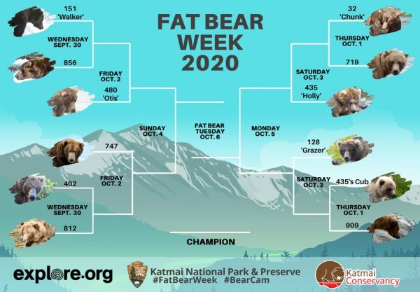 The 2020 Fat Bear Week bracket, presented by Katmai National Park and Preserve, explore.org and Katmai Conservancy